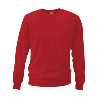 Fruit of the Loom Fruit of the Loom Sweatshirt red | S