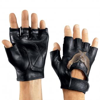 Gloves Eagle black | XL