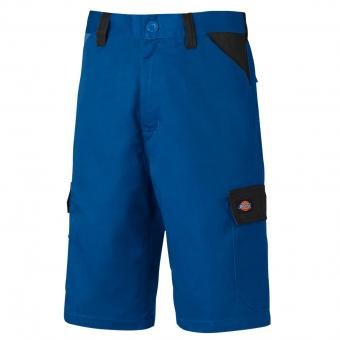 Dickies Every Day Bermuda royal blau | 50